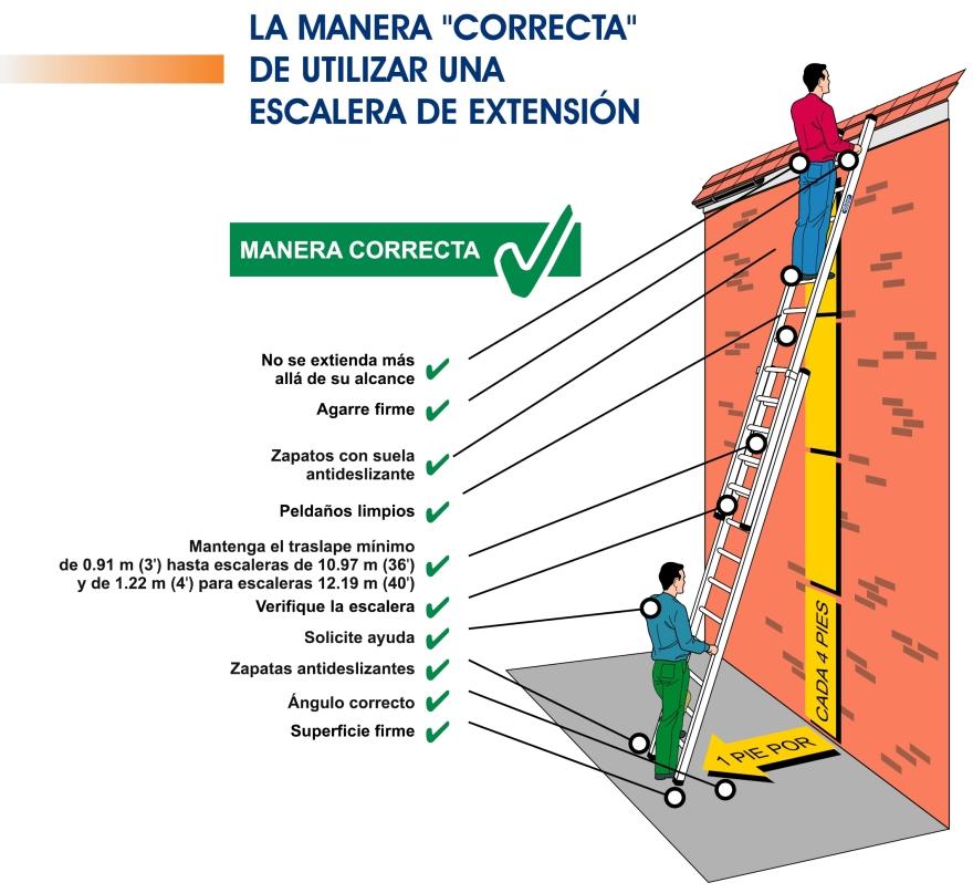 Inco escaleras extensi n seguridad inco for Partes de una escalera